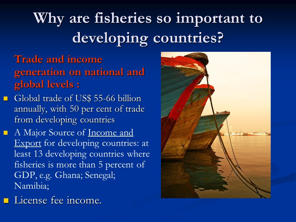 Why are fisheries so important to developing countries