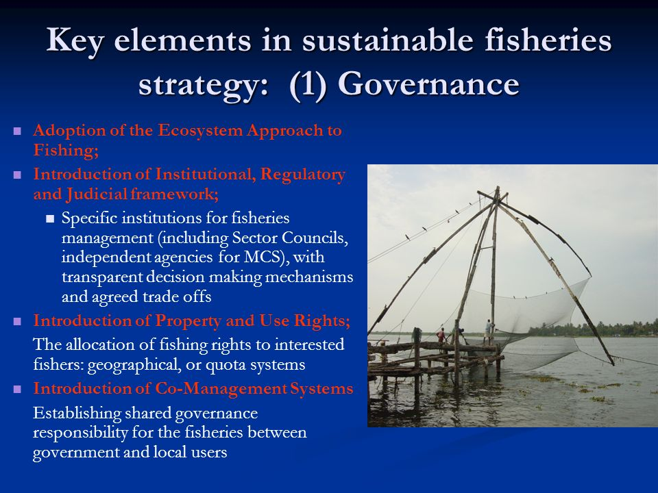 Key elements in sustainable fisheries strategy: (1) Governance