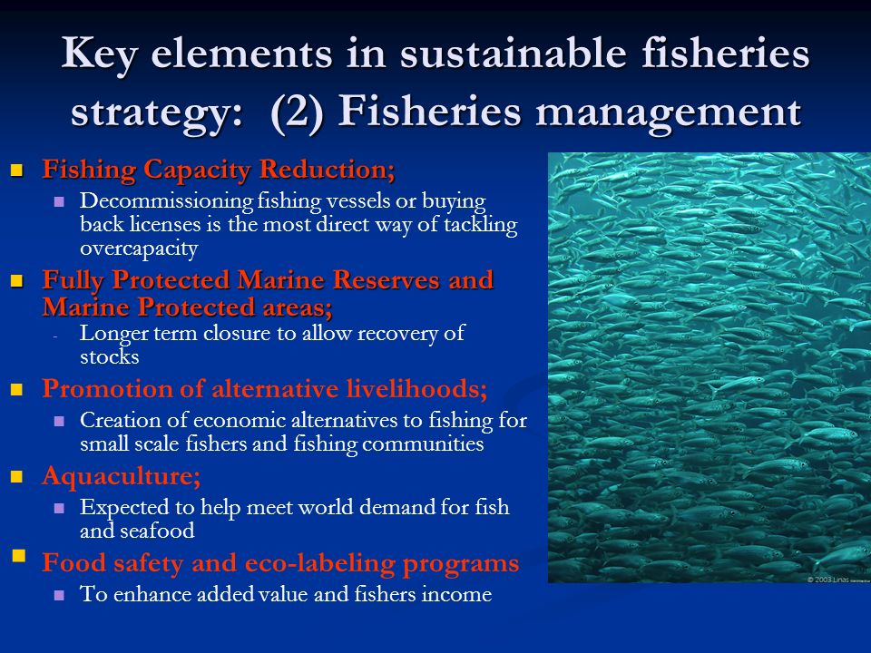 Key elements in sustainable fisheries strategy: (2) Fisheries management