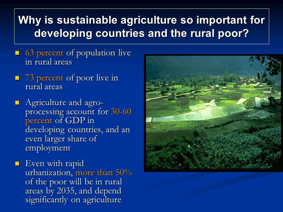 Why is sustainable agriculture so important for developing countries and the rural poor