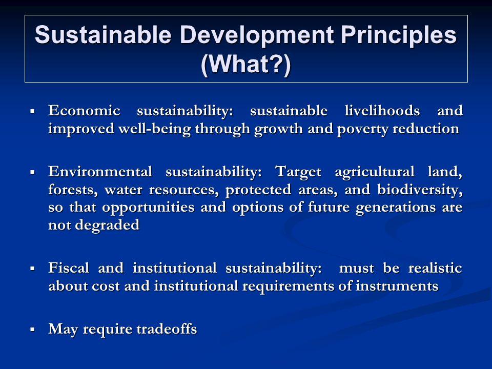 Sustainable Development Principles (What )