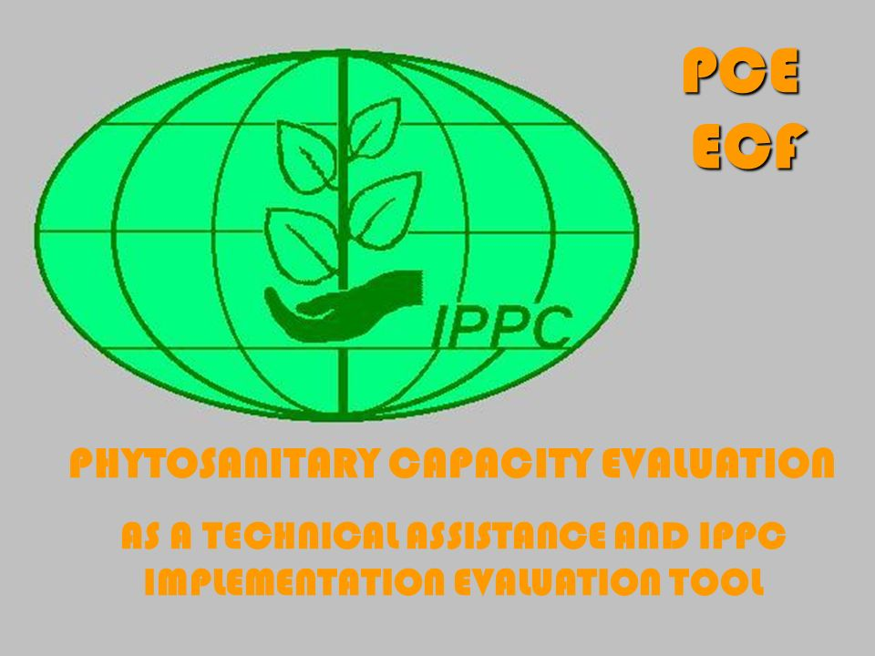 AS A TECHNICAL ASSISTANCE AND IPPC IMPLEMENTATION EVALUATION TOOL