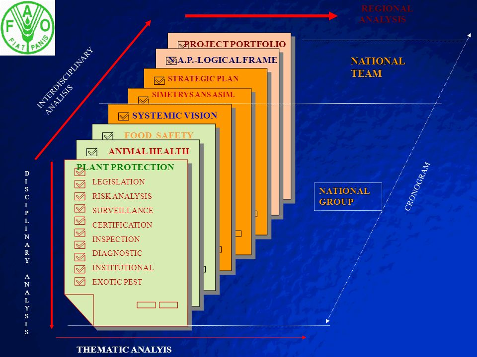 NATIONAL TEAM REGIONAL ANALYSIS PROJECT PORTFOLIO N.A.P.-LOGICAL FRAME