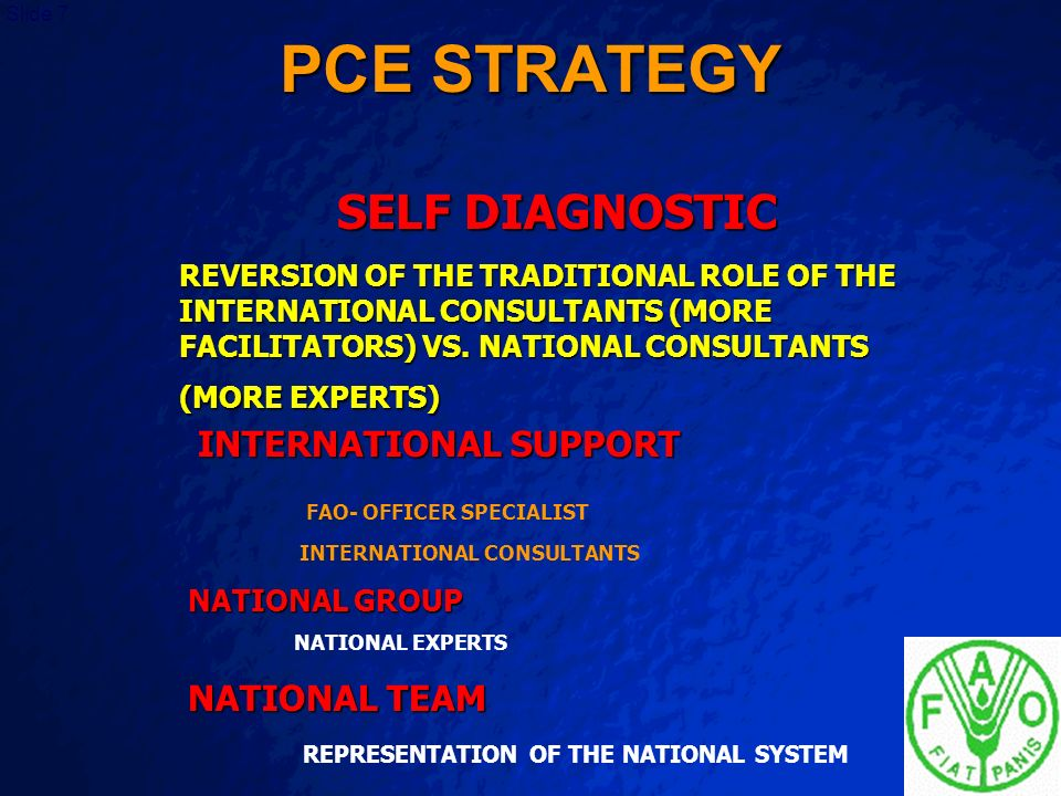 PCE STRATEGY SELF DIAGNOSTIC INTERNATIONAL SUPPORT