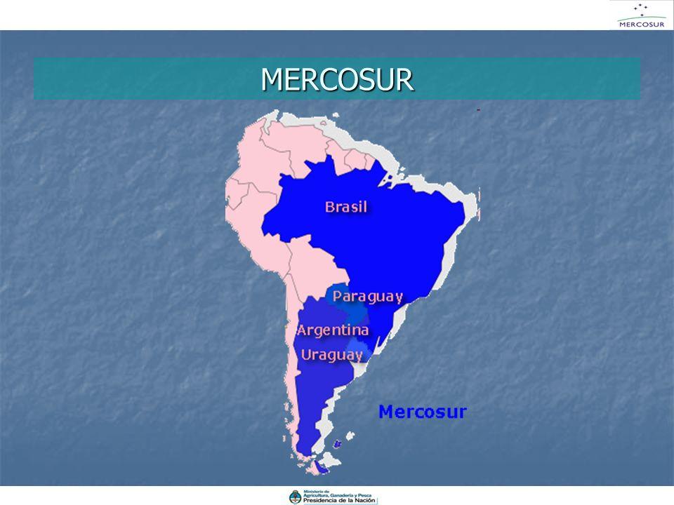 MERCOSUR El MERCOSUR ES un esquema de integración regional, conformado por 4 países.