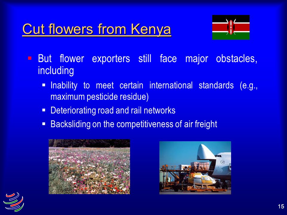 Cut flowers from KenyaBut flower exporters still face major obstacles, including.
