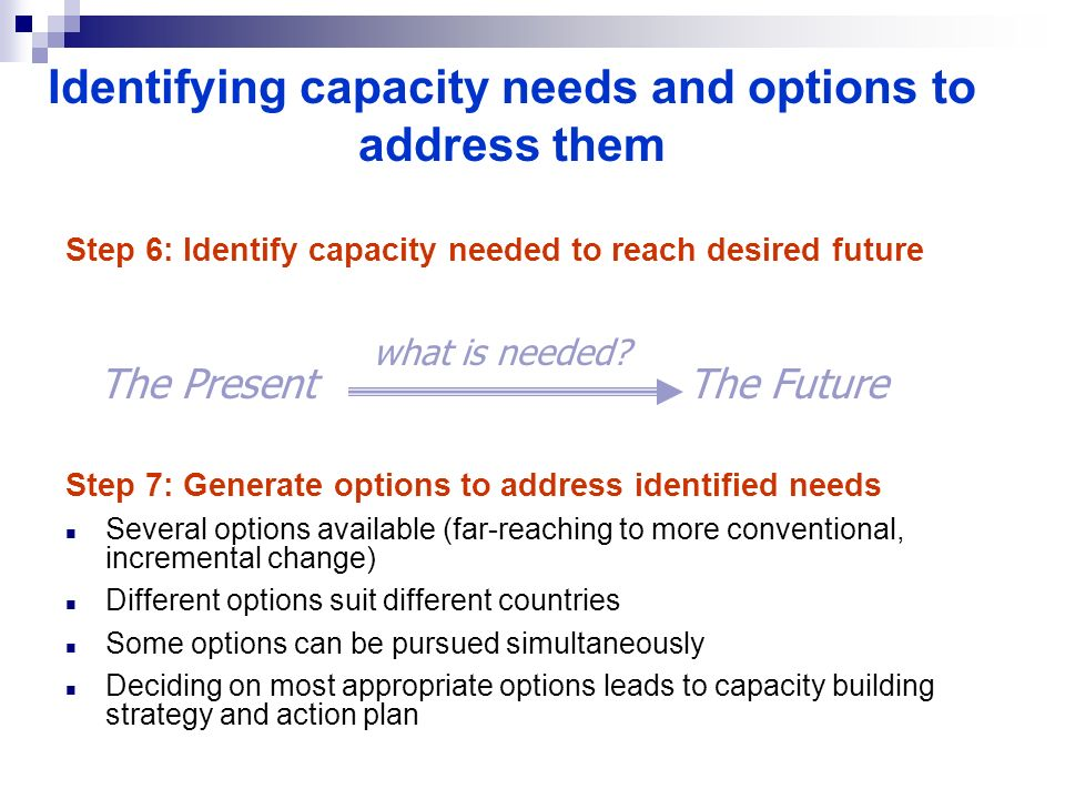 Identifying capacity needs and options to address them