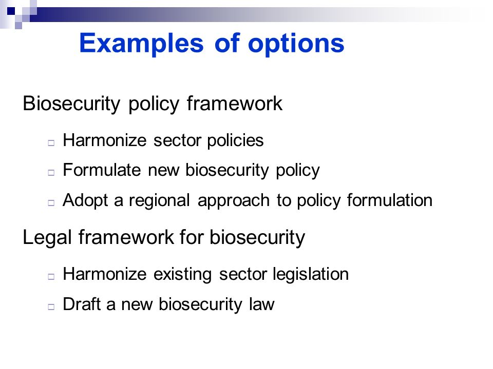 Examples of options Biosecurity policy framework