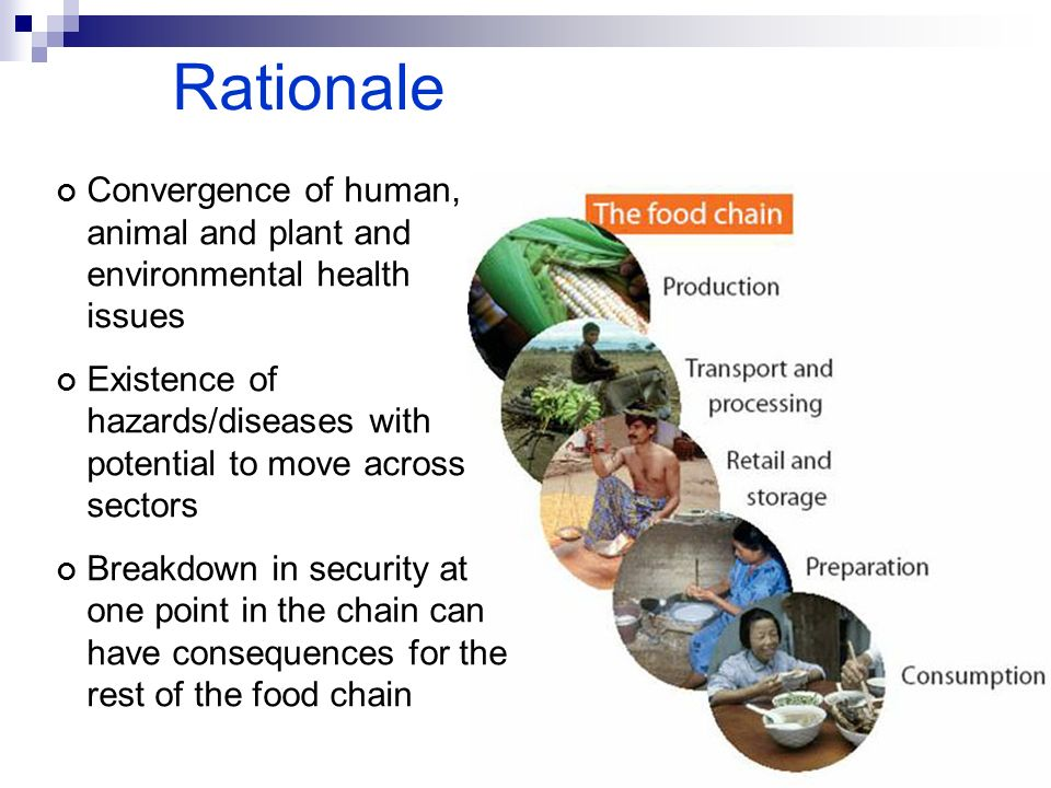 Rationale Convergence of human, animal and plant and environmental health issues.