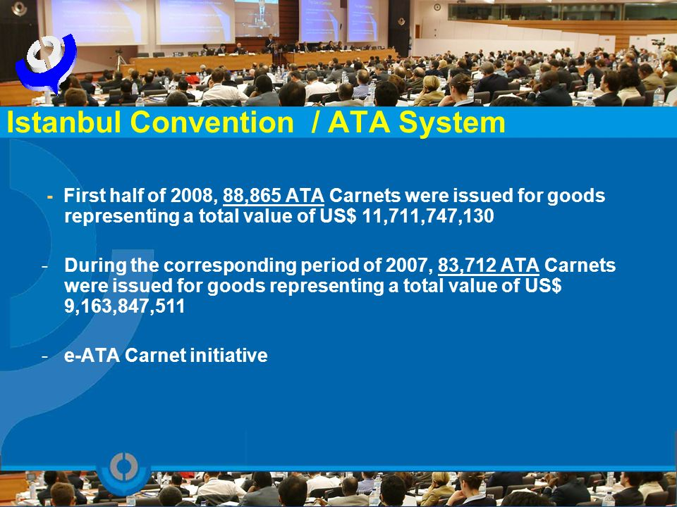 Istanbul Convention / ATA System