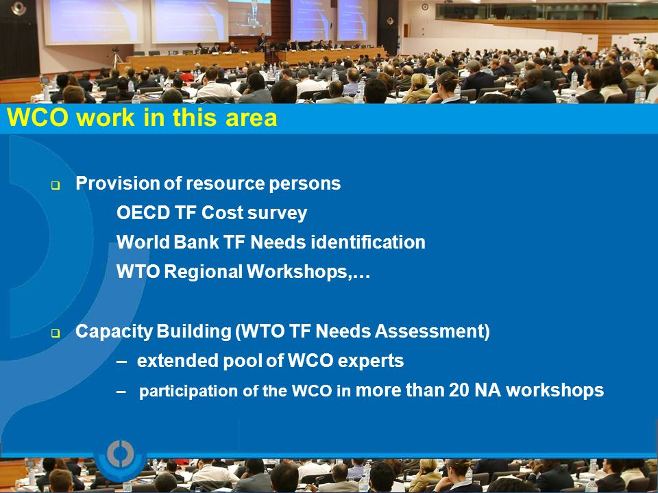 WCO work in this area Provision of resource persons