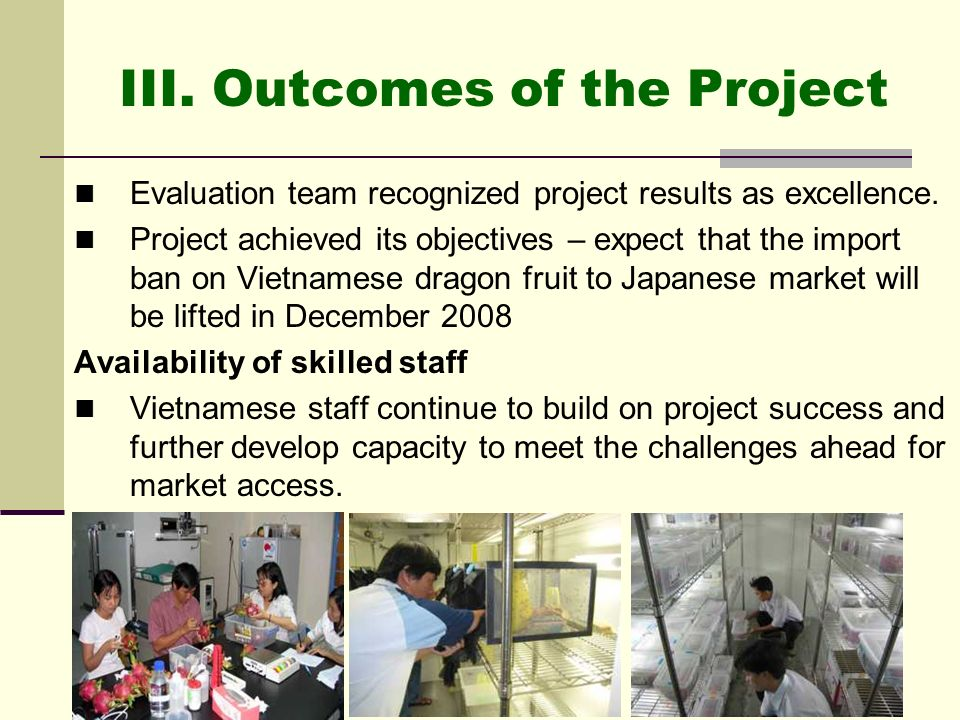 III. Outcomes of the Project