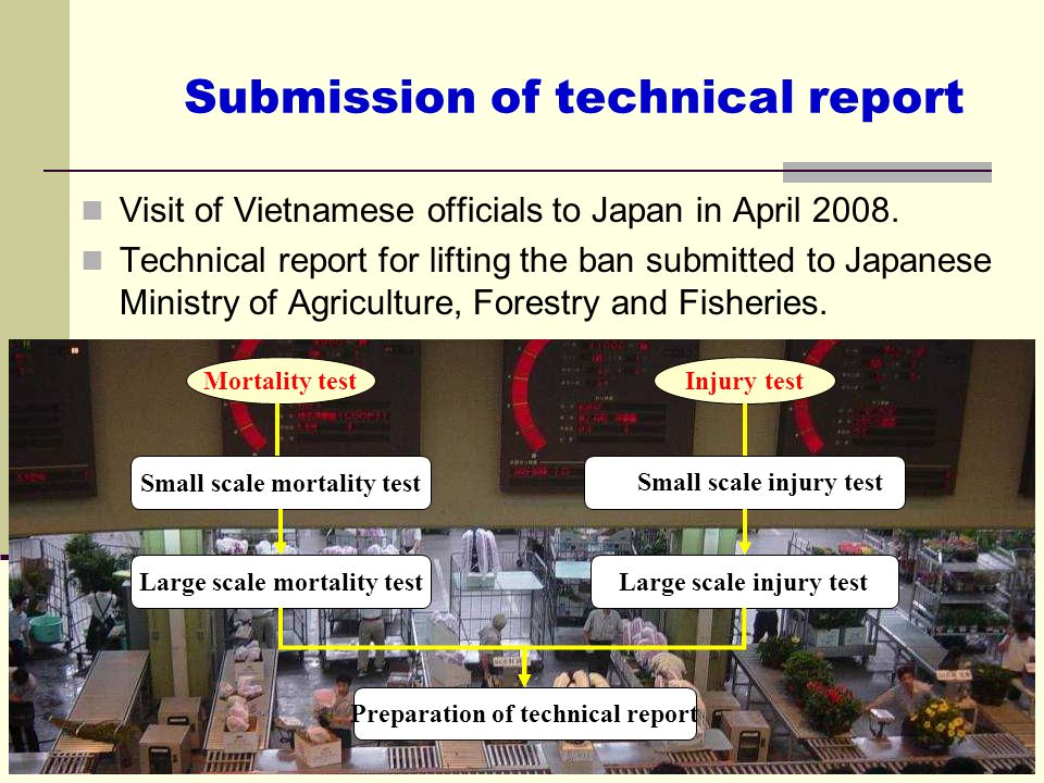 Submission of technical report