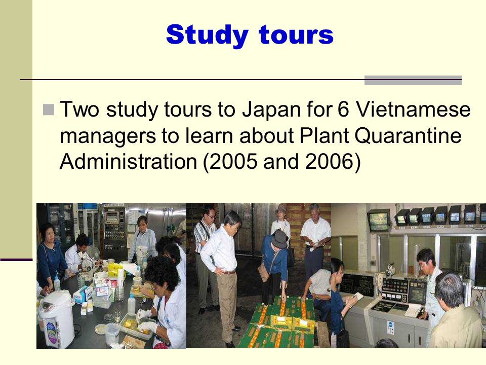 Study toursTwo study tours to Japan for 6 Vietnamese managers to learn about Plant Quarantine Administration (2005 and 2006)