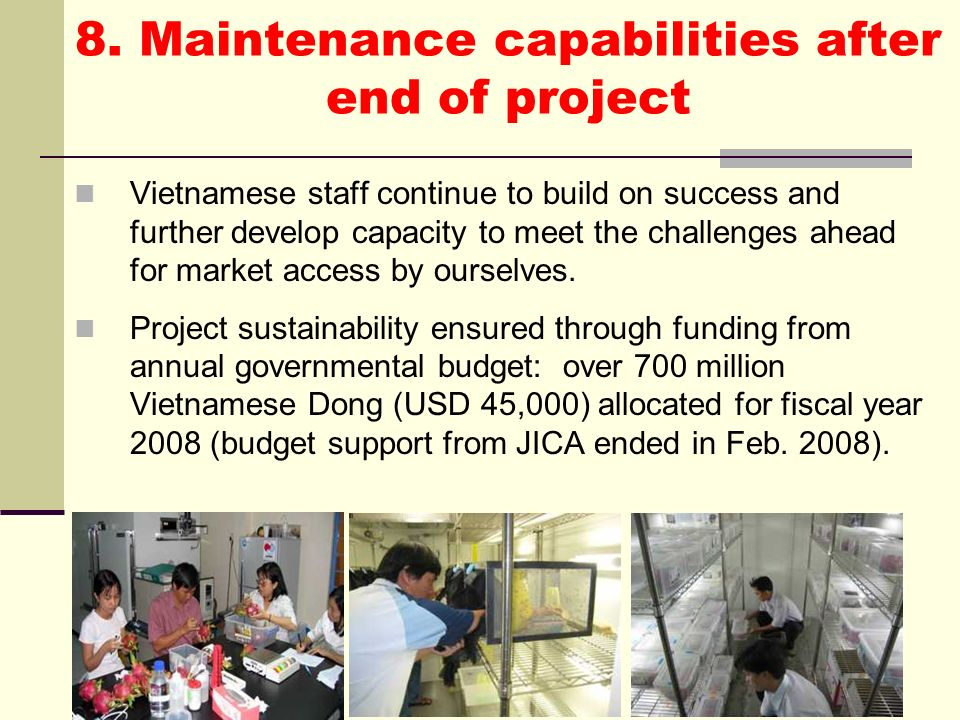 8. Maintenance capabilities after end of project
