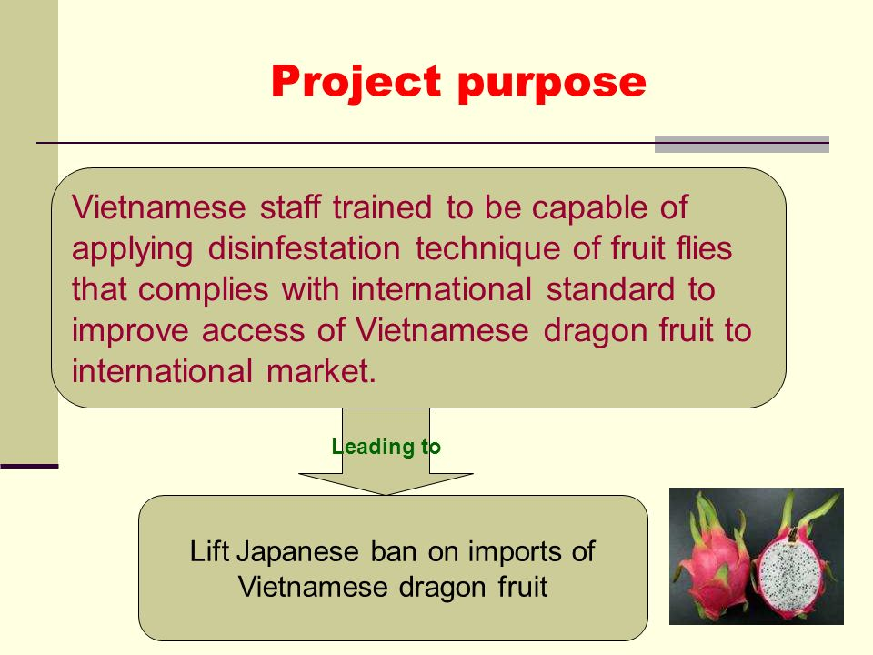 Lift Japanese ban on imports of Vietnamese dragon fruit