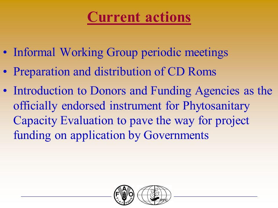 Current actions Informal Working Group periodic meetings