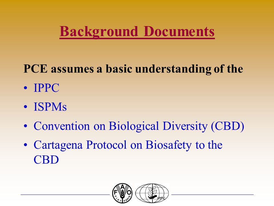 Background Documents PCE assumes a basic understanding of the IPPC