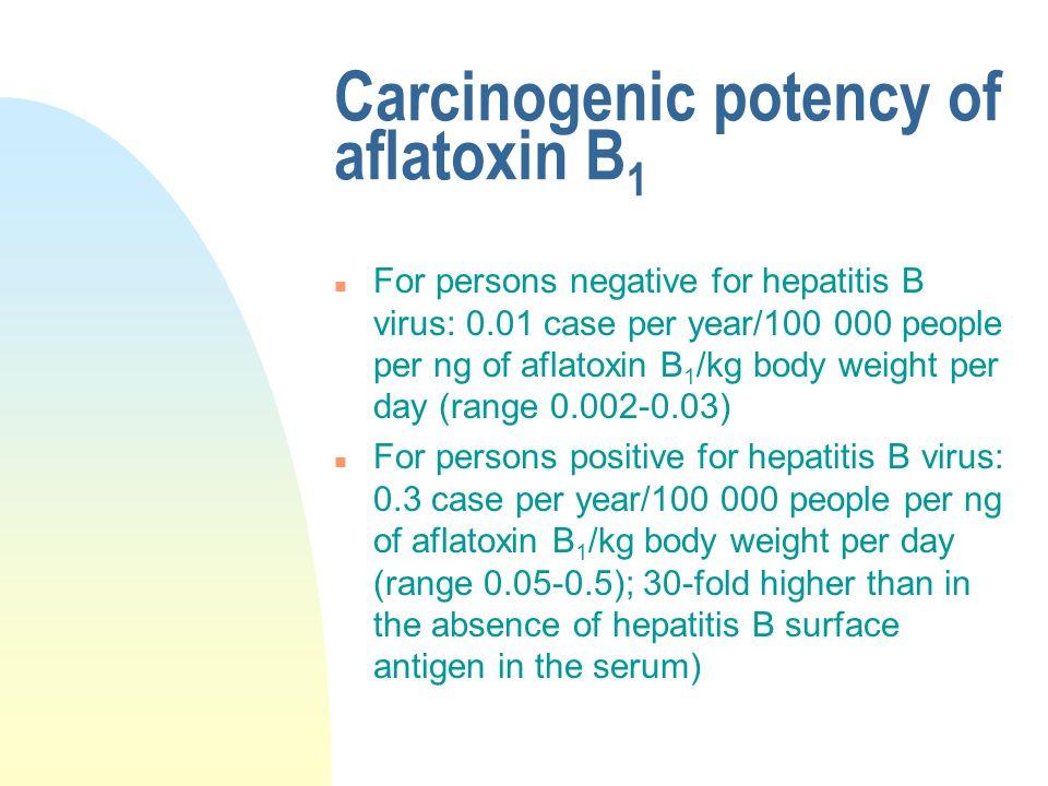 Carcinogenic potency of aflatoxin B1