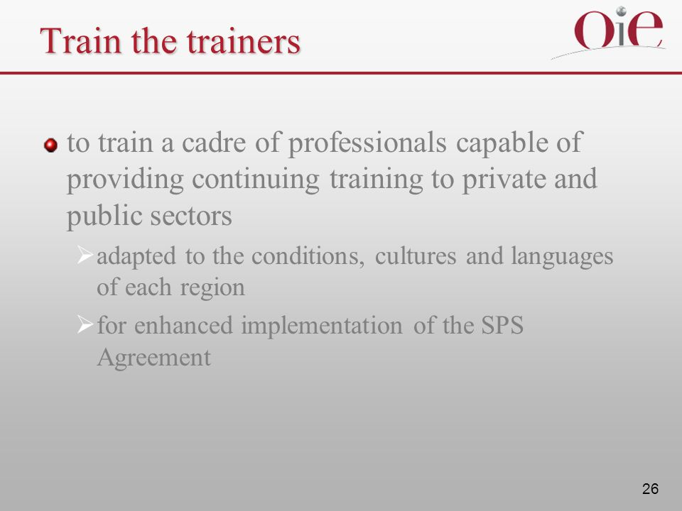 Train the trainers to train a cadre of professionals capable of providing continuing training to private and public sectors.