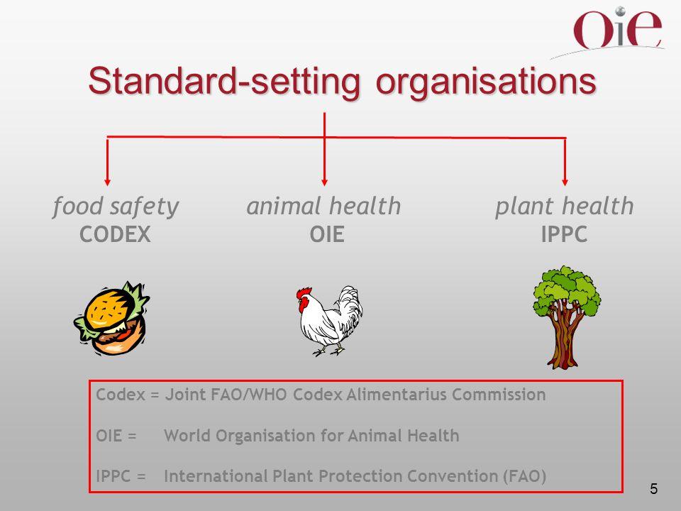 Standard-setting organisations