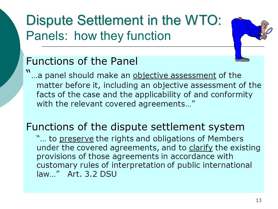 Dispute Settlement in the WTO: Panels: how they function
