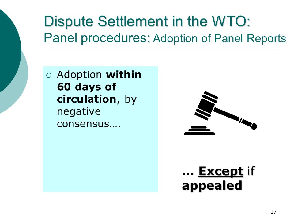 Dispute Settlement in the WTO: Panel procedures: Adoption of Panel Reports