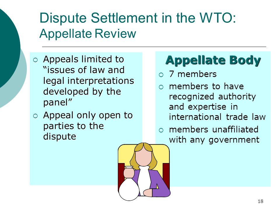 Dispute Settlement in the WTO: Appellate Review