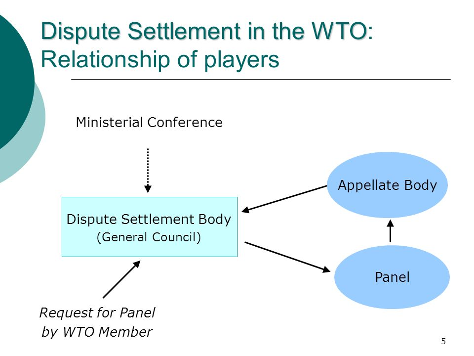 Dispute Settlement in the WTO: Relationship of players