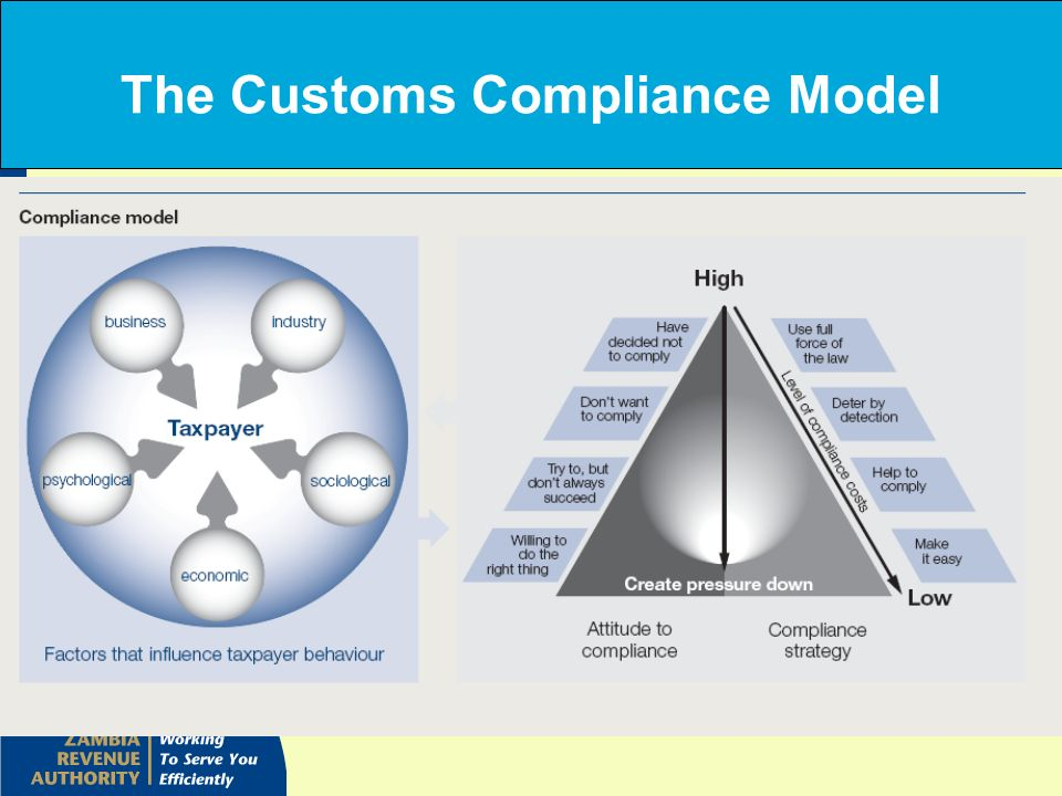 The Customs Compliance Model