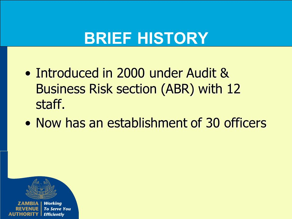 BRIEF HISTORY Introduced in 2000 under Audit & Business Risk section (ABR) with 12 staff.