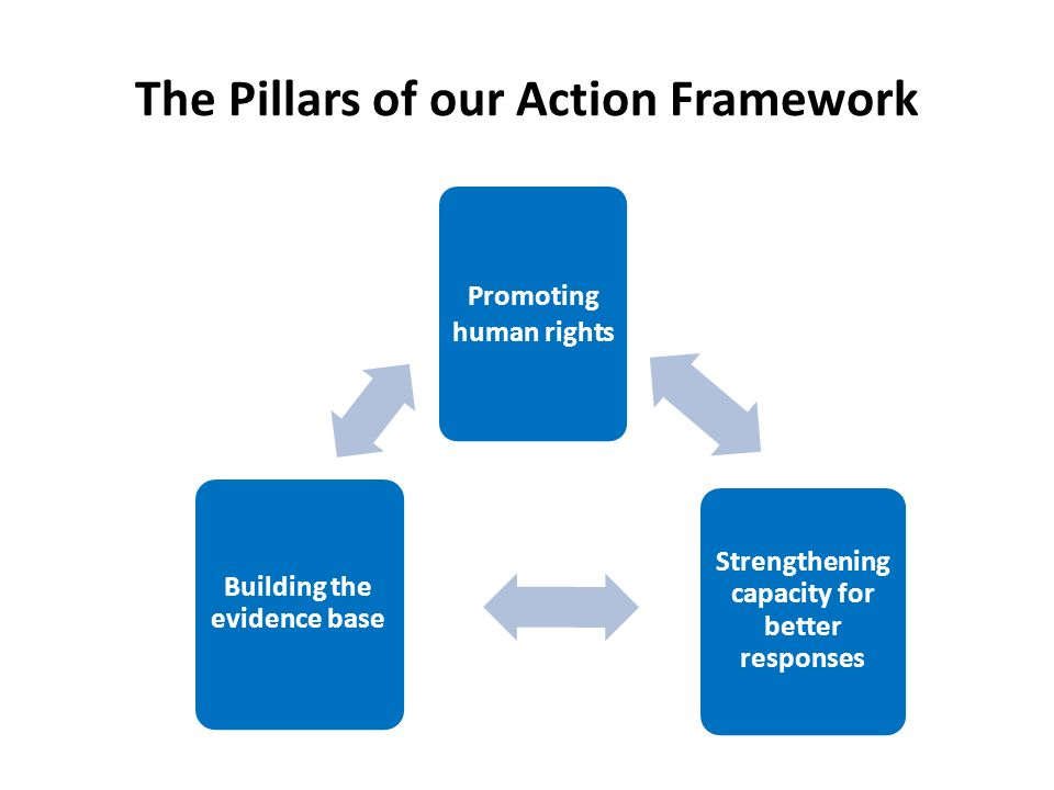 The Pillars of our Action Framework