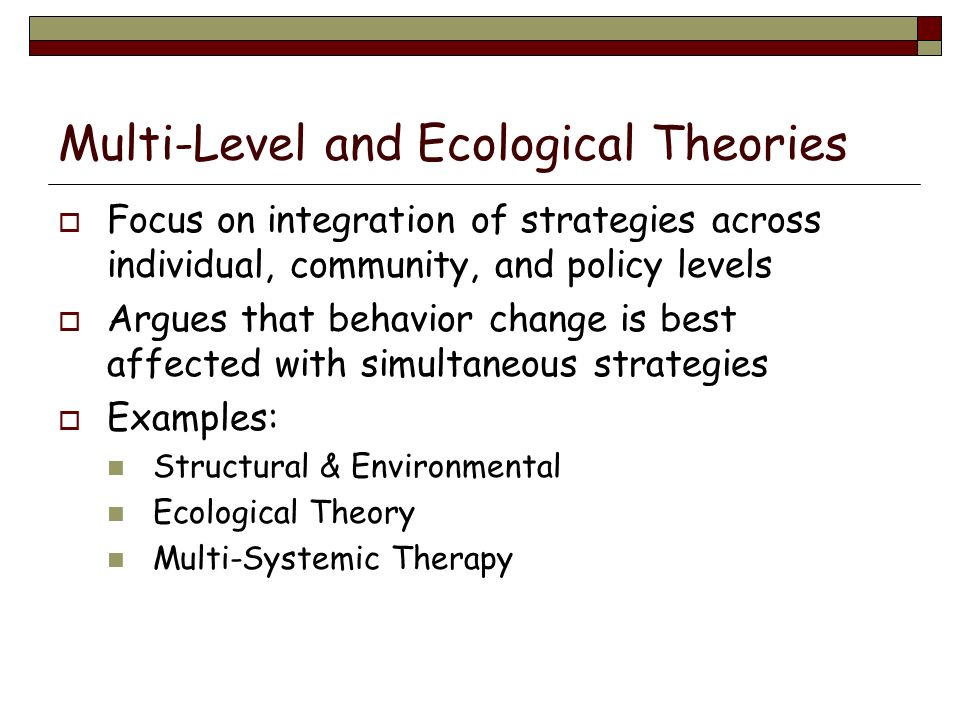 Multi-Level and Ecological Theories