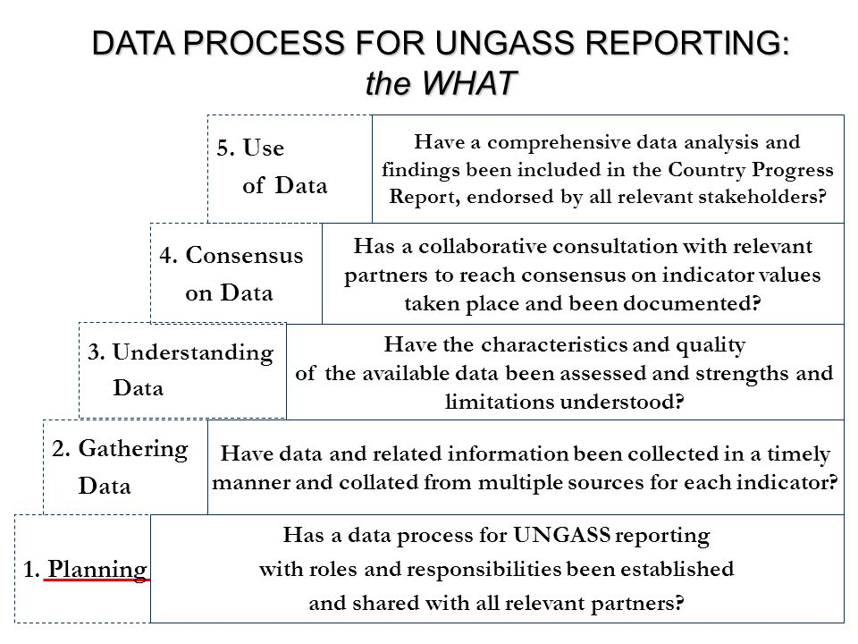 DATA PROCESS FOR UNGASS REPORTING: the WHAT