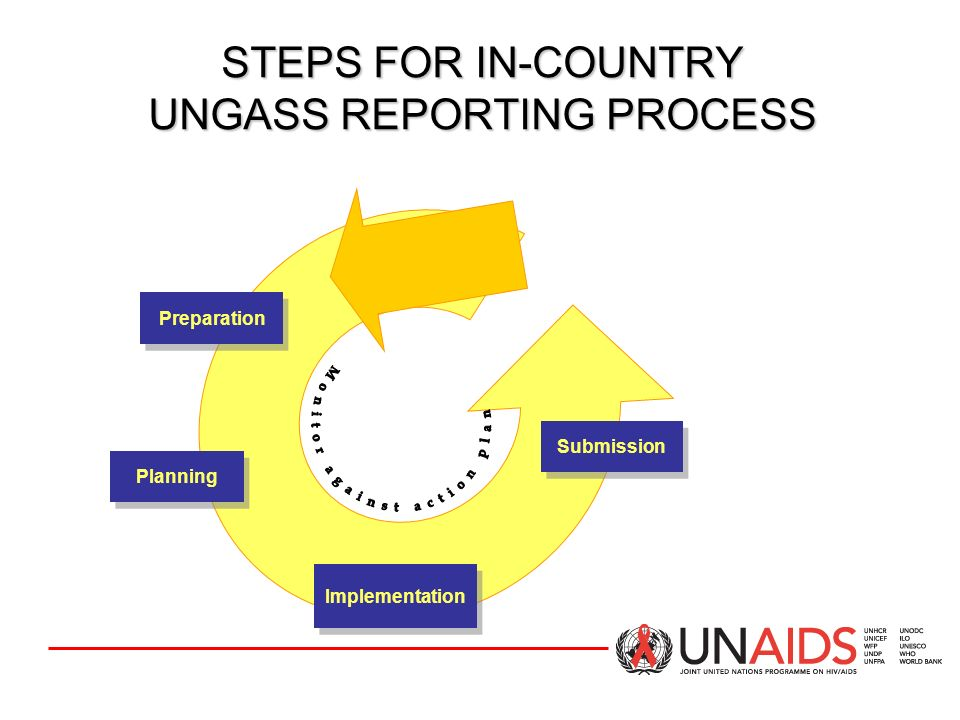 STEPS FOR IN-COUNTRY UNGASS REPORTING PROCESS