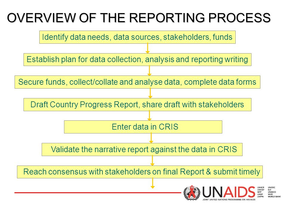 OVERVIEW OF THE REPORTING PROCESS
