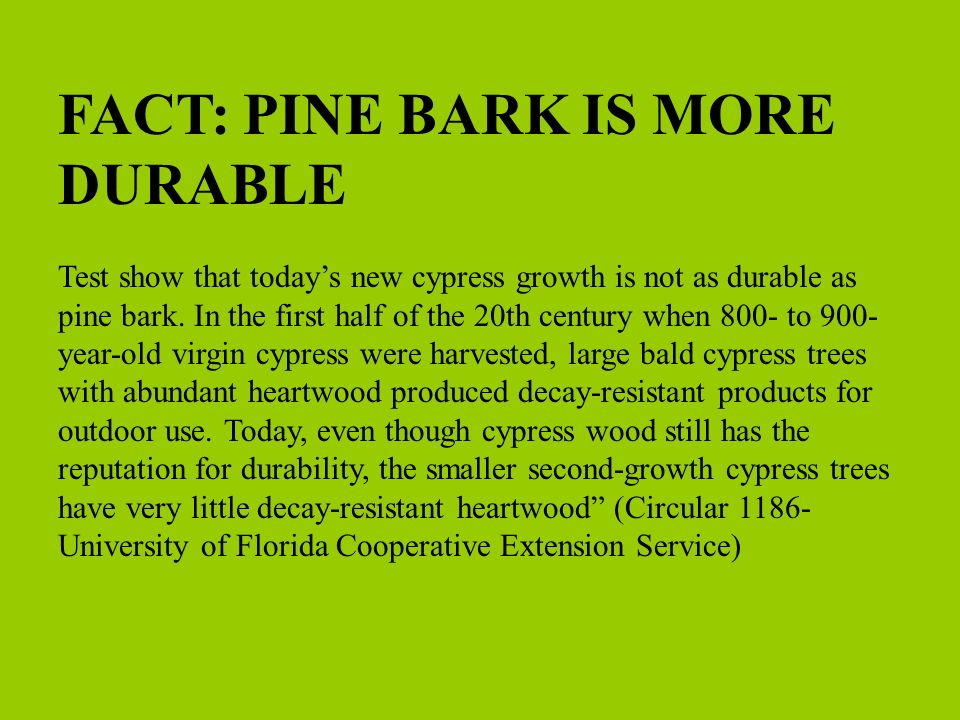 FACT: PINE BARK IS MORE DURABLE