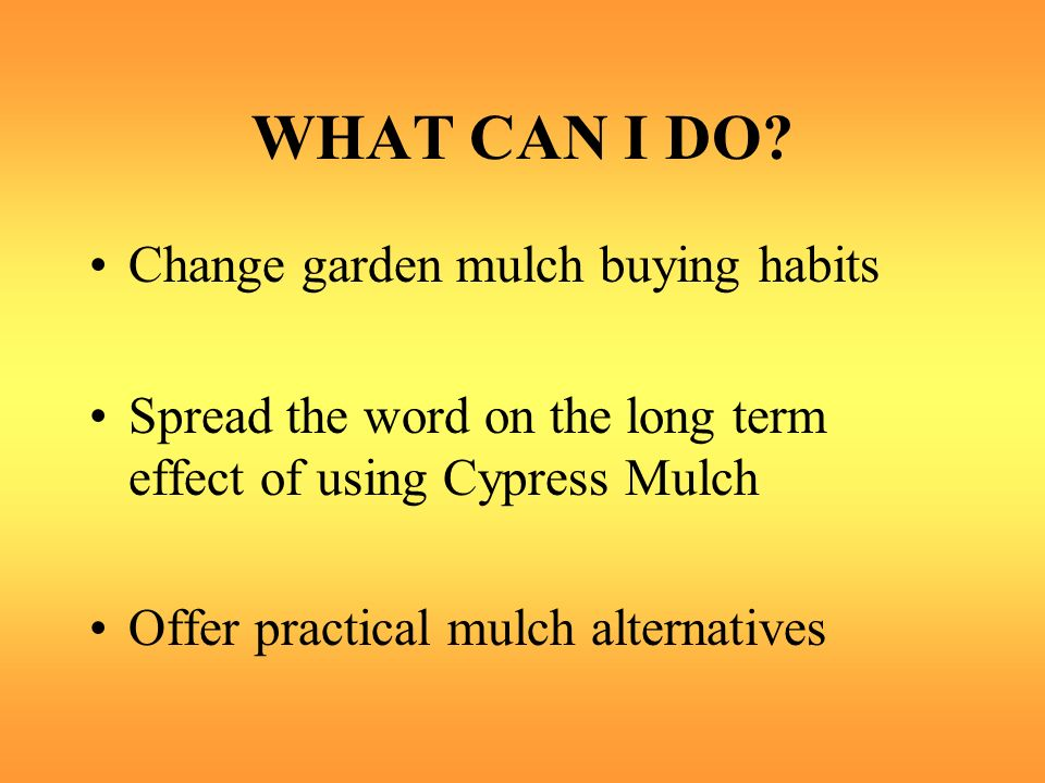 WHAT CAN I DO Change garden mulch buying habits