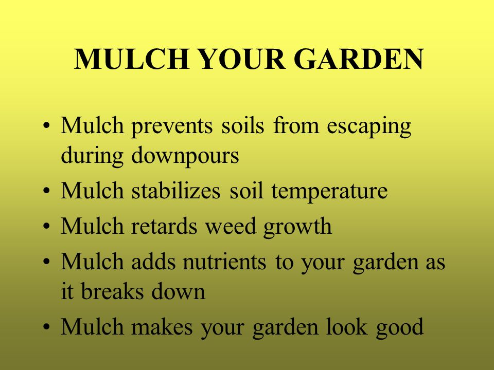 MULCH YOUR GARDEN Mulch prevents soils from escaping during downpours
