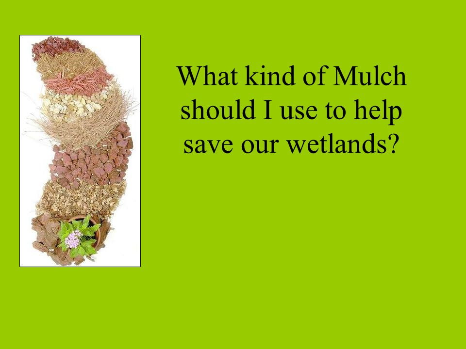 What kind of Mulch should I use to help save our wetlands