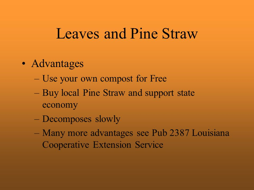 Leaves and Pine Straw Advantages Use your own compost for Free