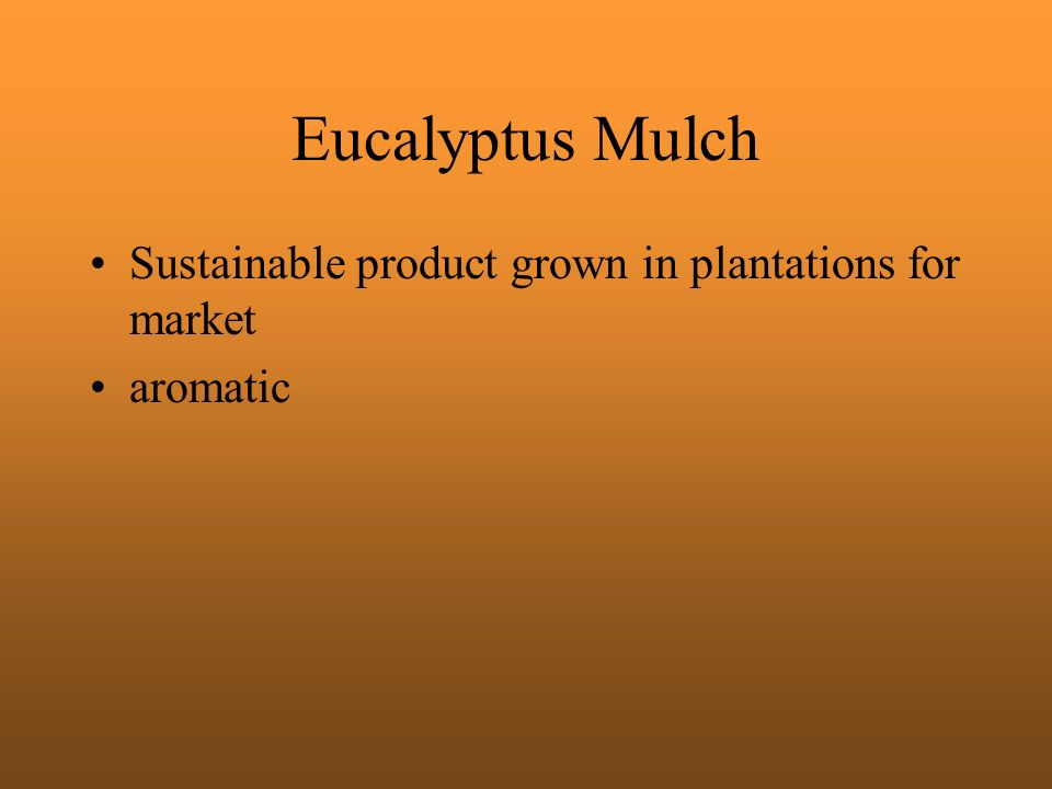 Eucalyptus Mulch Sustainable product grown in plantations for market