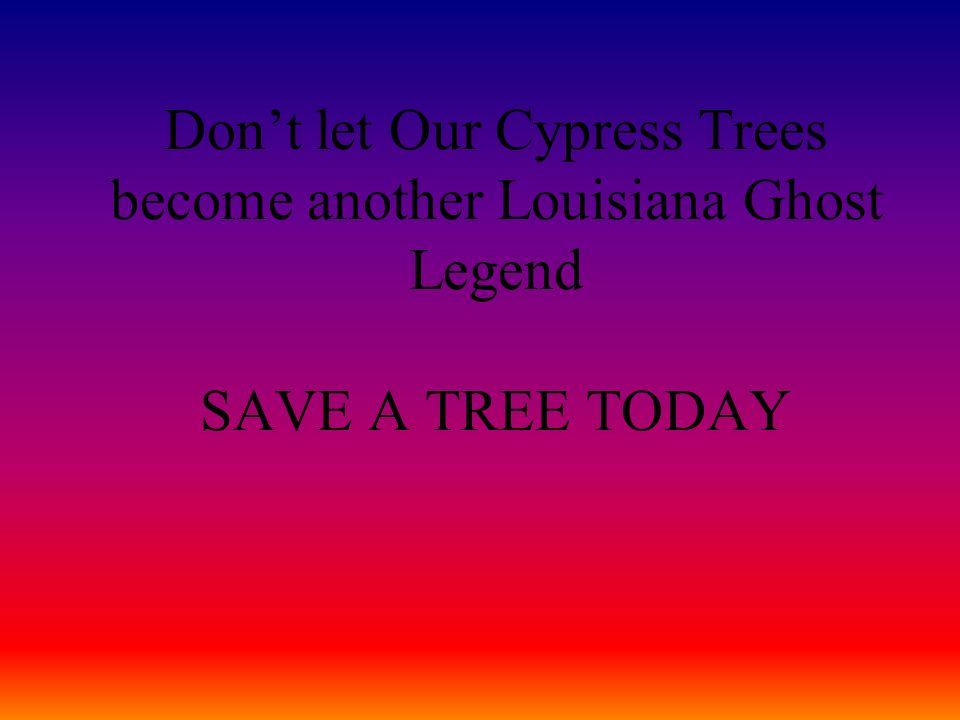 Don't let Our Cypress Trees become another Louisiana Ghost Legend SAVE A TREE TODAY
