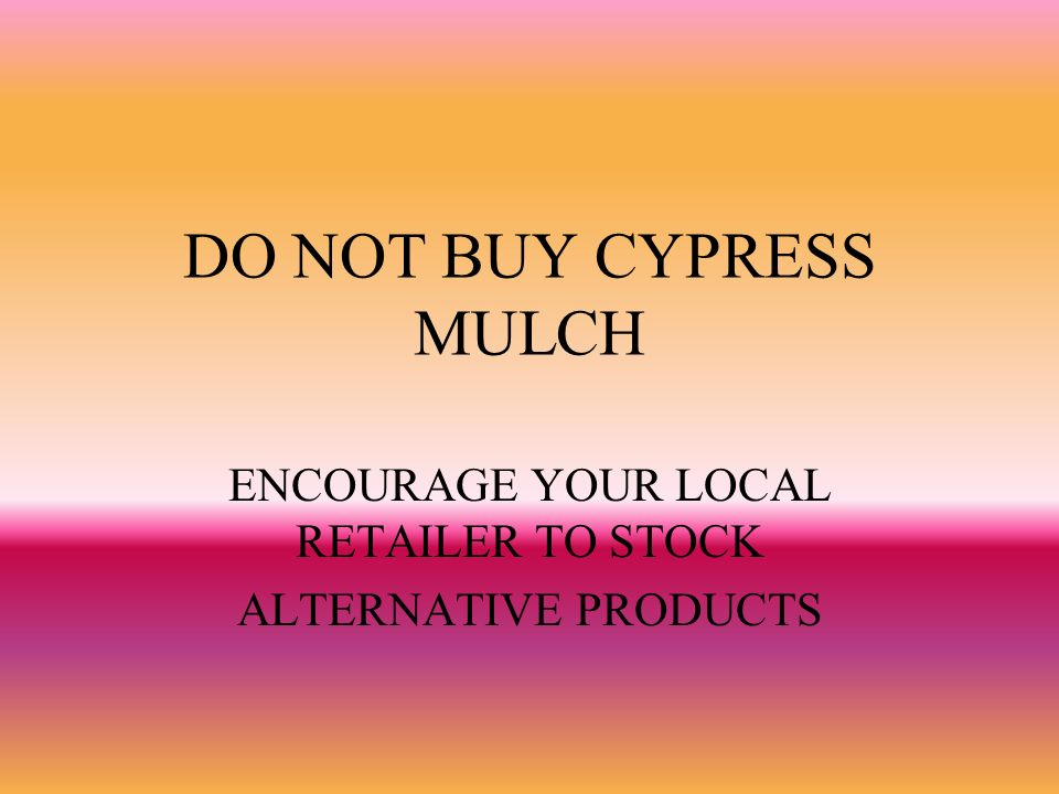DO NOT BUY CYPRESS MULCH