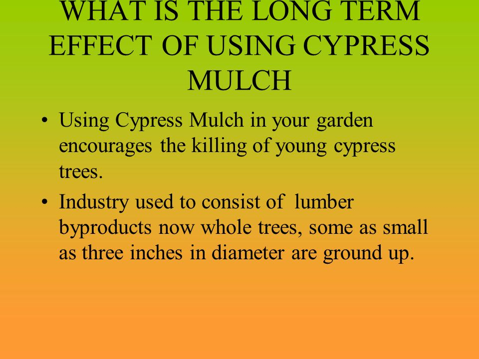 WHAT IS THE LONG TERM EFFECT OF USING CYPRESS MULCH
