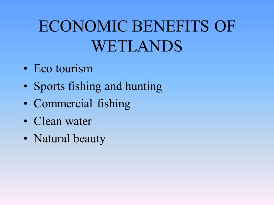 ECONOMIC BENEFITS OF WETLANDS