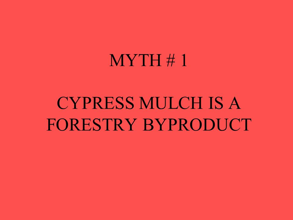 MYTH # 1 CYPRESS MULCH IS A FORESTRY BYPRODUCT
