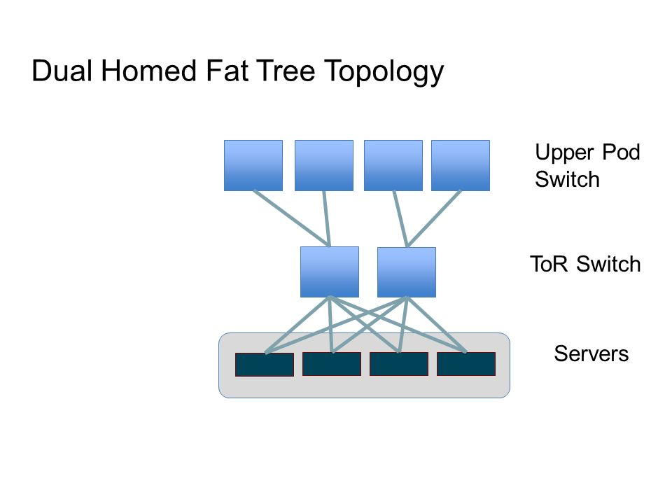 Dual Homed Fat Tree Topology