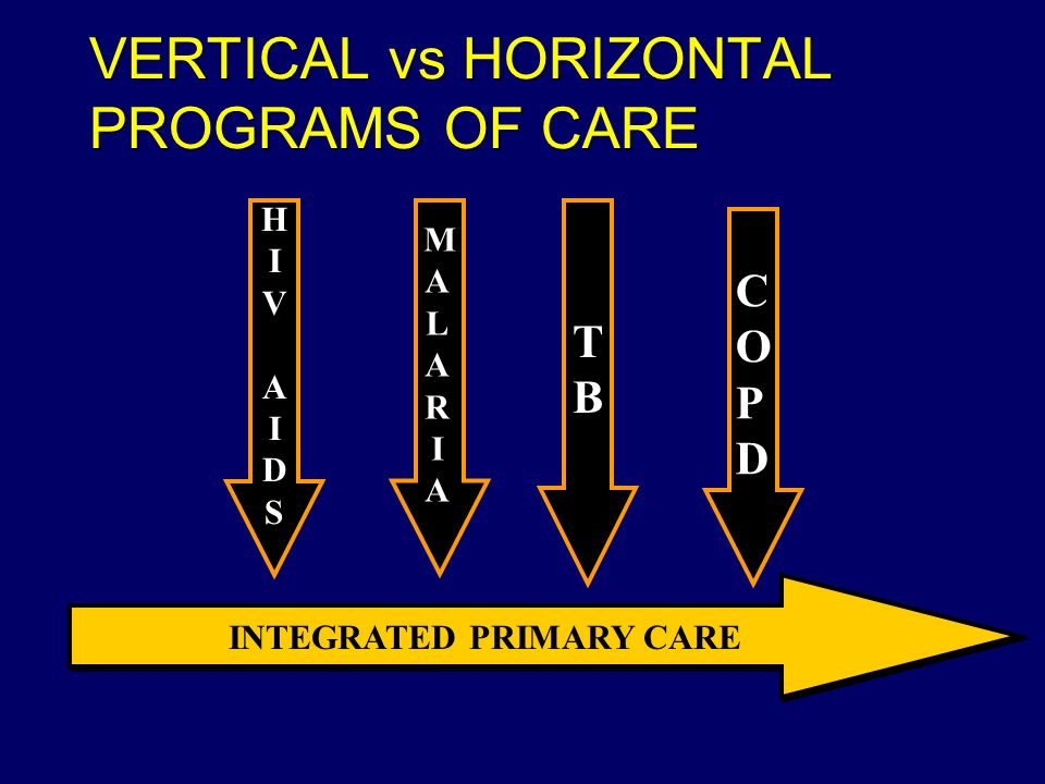 VERTICAL vs HORIZONTAL PROGRAMS OF CARE