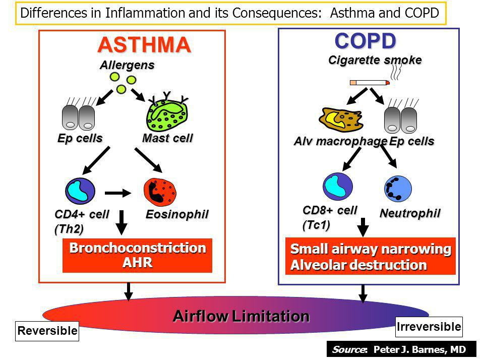 COPD ASTHMA Airflow Limitation
